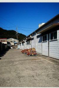 漁業の作業小屋