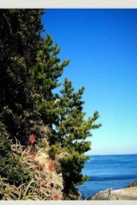 答志島の浜